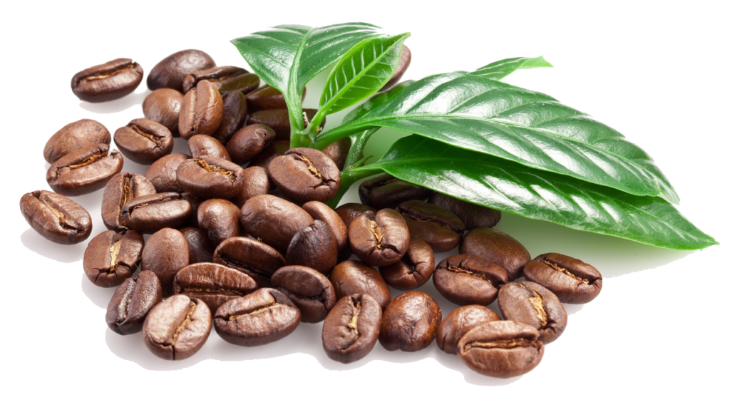 coffee-beans-png-image